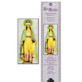 Pochette encens - Vierge Miraculeuse - 15 pces